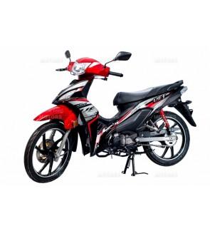 VE1 (W MOTOR)